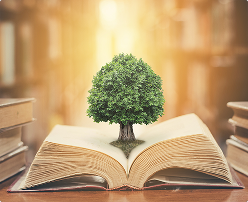 Tree on the book